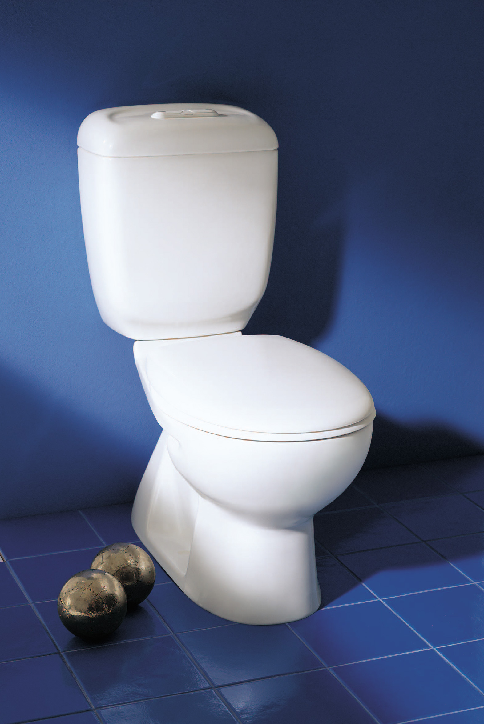 how to find out caroma toilet model number